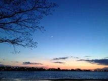 Árbol de la luna de la puesta del sol Fotografía de archivo