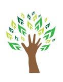 Árbol de la mano Fotografía de archivo