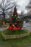 Árbol de la Navidad o del Año Nuevo s en el parque Fotografía de archivo
