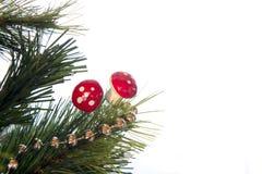 Árbol de la rama de la Navidad Foto de archivo libre de regalías