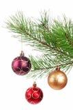 Árbol de la rama de la Navidad con la decoración Imagen de archivo libre de regalías
