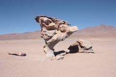Árbol de la roca Imagen de archivo libre de regalías