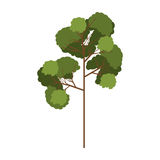 Árbol de la silueta con el modelo frondoso tres de las ramas Imágenes de archivo libres de regalías