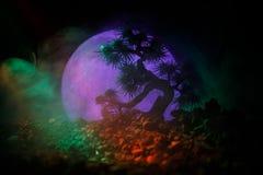 Árbol de la silueta en fondo de la Luna Llena Luna Llena que sube sobre árbol del estilo japonés contra el cielo de niebla entona Imagenes de archivo