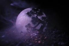 Árbol de la silueta en fondo de la Luna Llena Luna Llena que sube sobre árbol del estilo japonés contra el cielo de niebla entona Imágenes de archivo libres de regalías