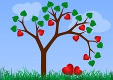 Árbol de la tarjeta del día de San Valentín (boda) Fotografía de archivo