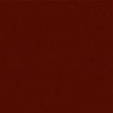 Árbol de la textura Imágenes de archivo libres de regalías