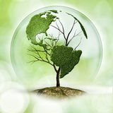 Árbol de la tierra Imagen de archivo libre de regalías