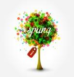 Árbol de la venta de la primavera Imágenes de archivo libres de regalías
