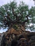 Árbol de la vida en Walt Disney World Fotos de archivo libres de regalías