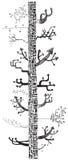 Árbol de las flechas (vector) Fotos de archivo