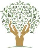 Árbol de las manos Imagen de archivo