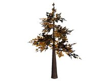 Árbol de los bonsais Stock de ilustración