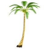 Árbol de los Cocos ilustración del vector