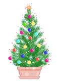 Árbol de Mini Christmas en una maceta Imágenes de archivo libres de regalías
