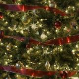 Árbol de navidad. fotos de archivo libres de regalías