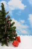 Árbol de navidad Fotografía de archivo libre de regalías