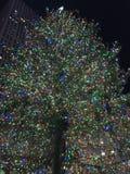 ¡Árbol de navidad! Fotografía de archivo