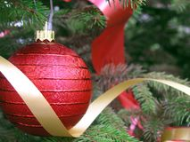 Árbol de navidad foto de archivo libre de regalías