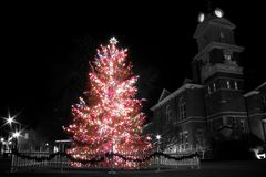 Árbol de Navidad Foto de archivo