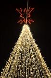Árbol de navidad adornado con las luces Fotos de archivo libres de regalías