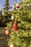 Árbol de navidad adornado en el bosque Imágenes de archivo libres de regalías
