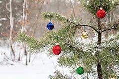 Árbol de navidad adornado en un bosque nevoso del pino Fotos de archivo libres de regalías