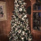 Árbol de navidad adornado en un hogar Fotos de archivo libres de regalías