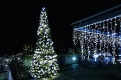 Árbol de navidad adornado y encendido en el jardín Foto de archivo libre de regalías