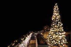 Árbol de navidad adornado y encendido en el jardín Imagenes de archivo