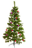 Árbol de navidad aislado en fondo del whihte Fotografía de archivo