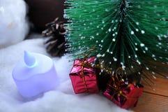 Árbol de navidad al lado de una ventana fría Fotografía de archivo libre de regalías