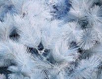 Árbol de navidad artificial blanco Imagenes de archivo