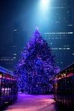 Árbol de navidad Bryant Park de NYC Foto de archivo libre de regalías