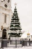 Árbol de navidad cerca de la catedral del salvador Imagen de archivo