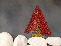 Árbol de Navidad con las bayas Fotografía de archivo libre de regalías