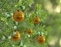 Árbol de navidad con las decoraciones de las bolas de la chuchería del oro Fotografía de archivo