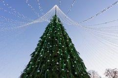 Árbol de navidad con las guirnaldas instaladas en la igualación de Vilna Fotografía de archivo