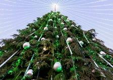 Árbol de navidad con las guirnaldas instaladas en Vilna por la tarde Imagen de archivo
