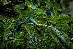 Árbol de navidad con las luces Fotos de archivo