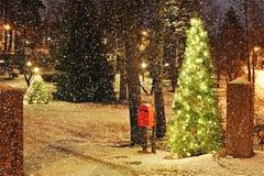 Árbol de navidad con las luces Imagen de archivo libre de regalías