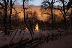 Árbol de navidad con las luces imagenes de archivo