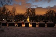 Árbol de navidad con las luces fotos de archivo libres de regalías
