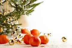 Árbol de navidad con las mandarinas en el fondo blanco de la nieve Fotografía de archivo