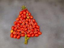 Árbol de Navidad con los tomates de cereza Fotografía de archivo libre de regalías