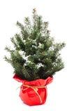 Árbol de navidad con nieve Foto de archivo libre de regalías