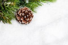 Árbol de navidad con pinecone Foto de archivo