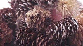 Árbol de navidad de conos almacen de metraje de vídeo