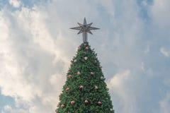 Árbol de navidad contra el cielo azul Imagen de archivo