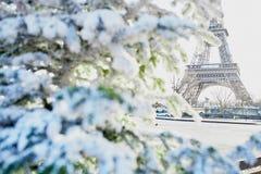 Árbol de navidad cubierto con nieve cerca de torre Eiffel Fotos de archivo